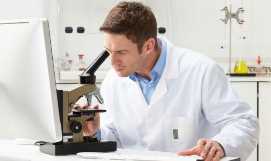 Una proteina anti stress aiuta le cellule tumorali