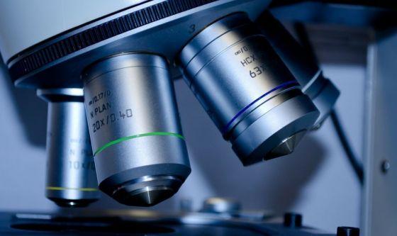 Scoperta Mical2, proteina che aiuta il tumore a diffondersi