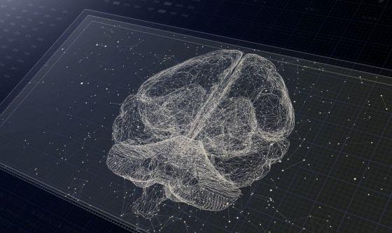 Come il cervello genera aspettative sul mondo circostante?