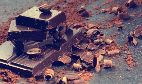 Cioccolato: un nemico per i nostri amici cuccioli