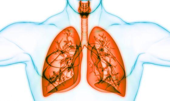 8 settembre, Giornata Mondiale della fibrosi cistica