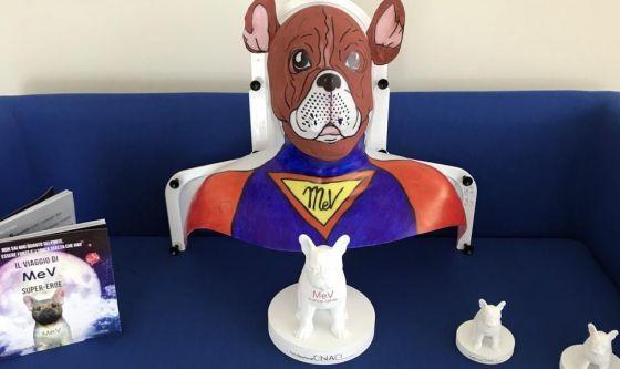 Un cane supereroe per affrontare il cancro