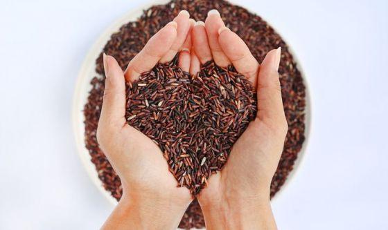 Riso rosso e probiotici mettono k.o. il colesterolo cattivo