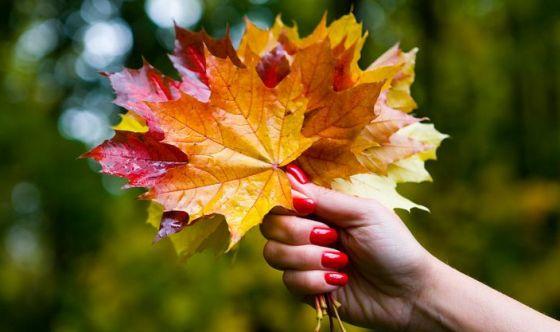 Fuori le unghie: i nail trend dell'autunno