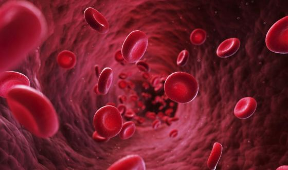 Creati vasi sanguigni artificiali grazie a stampante 3D