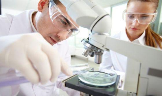Creato 'Alzheimer in capsula': cura al morbo più vicina