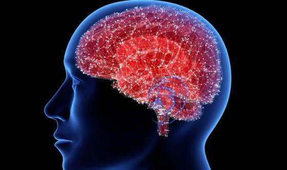 Troppo sale danneggia il cervello, ma non per ipertensione