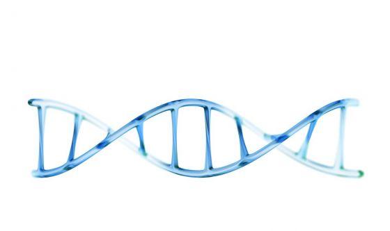 In Italia scoperto il fiore del DNA