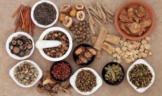 Endometriosi: l'efficacia delle erbe cinesi