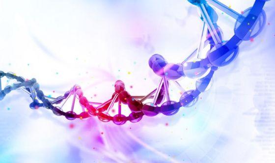 Il peso della genetica sulle cardiopatie