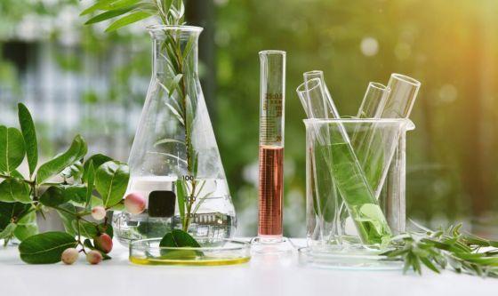 Cosmetici, con la fermentazione diventano più efficaci