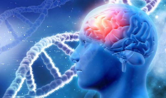 Svelata la struttura della proteina alla base dell'Alzheimer