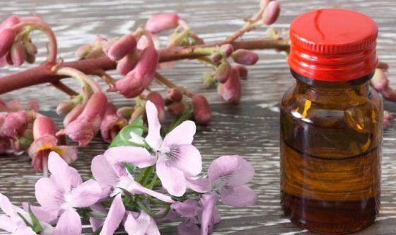 Floriterapia: importante per il benessere psicofisico