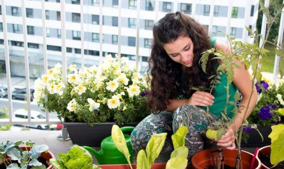 Giardinaggio e orto sul balcone per combattere lo stress