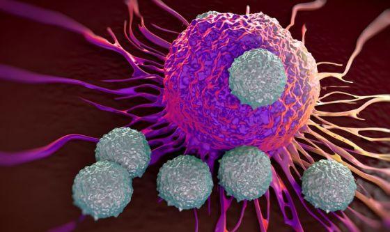 Un grande passo in avanti dell'immunoterapia oncologica