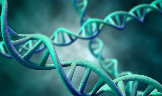 L'inquinamento aumenta l'infertilità agendo sul DNA