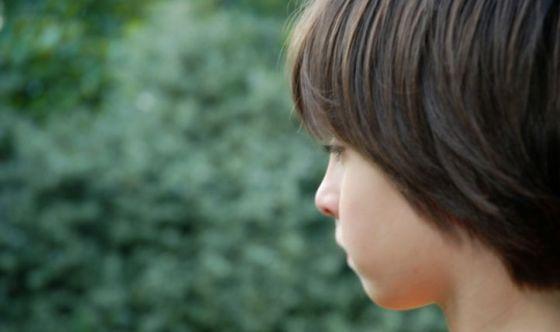 Integrazione con ferro e disturbi dello spettro autistico