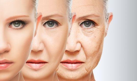Scoperto un meccanismo alla base dell'invecchiamento precoce