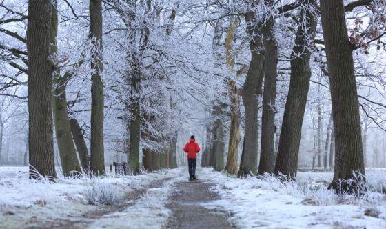 Non rinunciare a camminare nemmeno d'inverno
