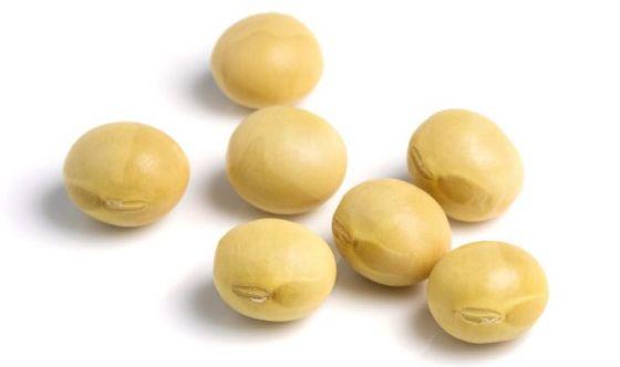 Insonnia: uno studio dimostra che la soia aiuta