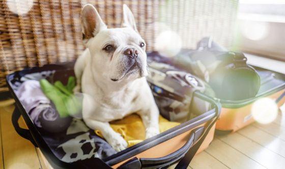 Italiani in vacanza, cosa mettono in valigia per curarsi?