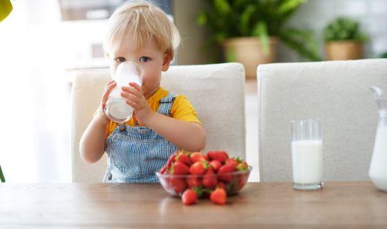 Latte d'asina con olio evo per i bimbi allergici al latte