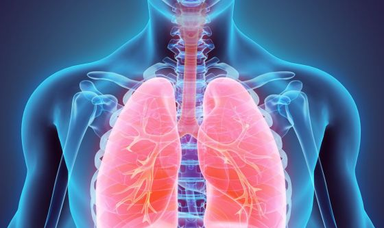 Fibrosi Polmonare Idiopatica: linee guida in italiano