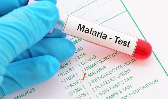 Un mix di due vaccini per sconfiggere la malaria
