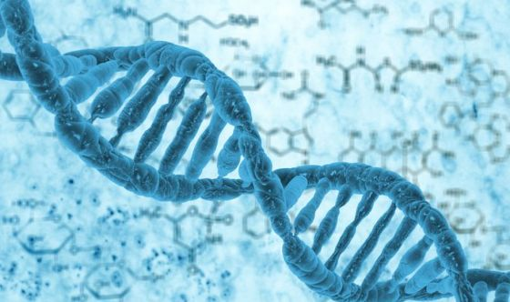 Malattie del rene nei bambini: scoperti i geni responsabili