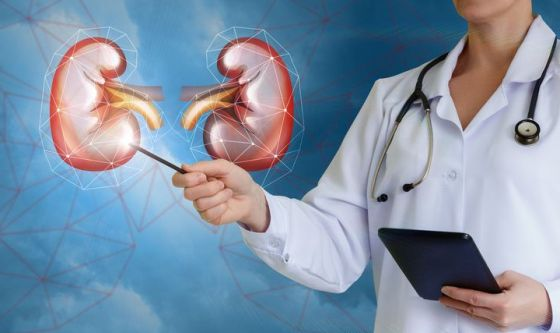 Malattie renali: tante vittime, poca attenzione