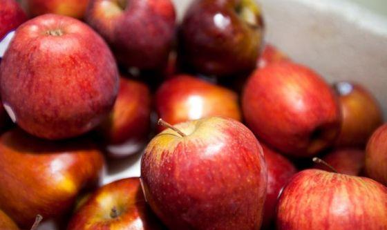 Momento d'oro per le mele, frutto perfetto per il lockdown