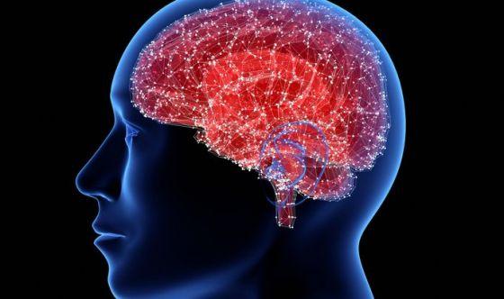 Lo stress influisce negativamente anche sul nostro cervello