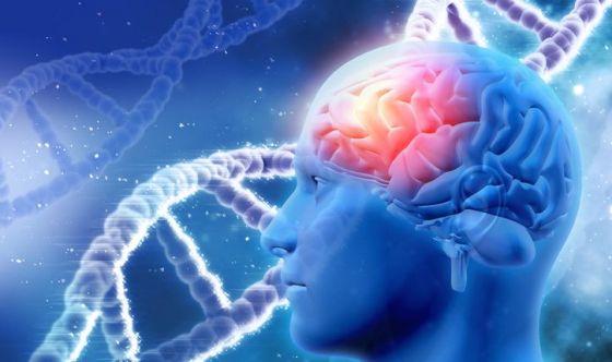 Esiste un denominatore comune tra olfatto e memoria spaziale
