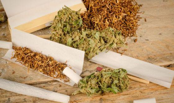 La marijuana previene il declino cognitivo negli anziani?