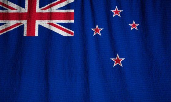 Gatti vietati in Nuova Zelanda per preservare biodiversità