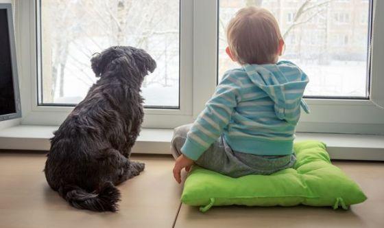 Animali domestici in una famiglia su tre