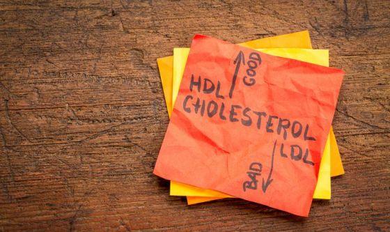 Monacolina K, la sostanza che riduce il colesterolo