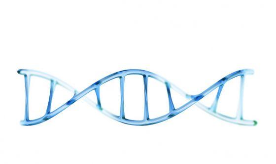 Manipolare il DNA: in Cina primi test sull'uomo