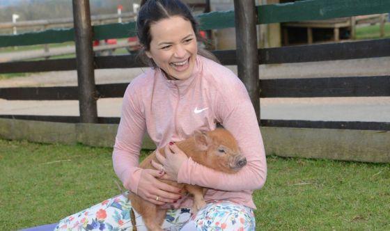 Ecco il Piggy Pilates, la pratica coi maialini nani