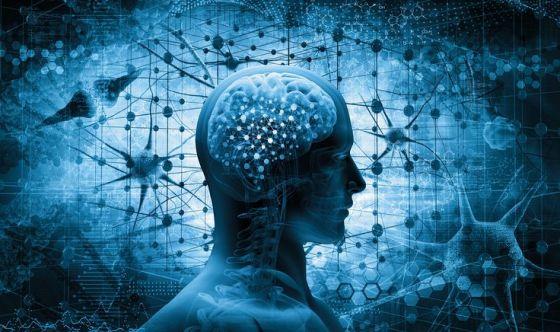 Riprogrammare le cellule del cervello contro il Parkinson