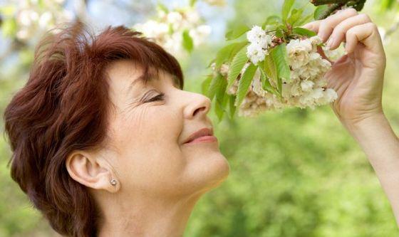 Gli odori condizionano la memoria