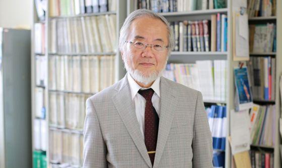 Premio Nobel a Ohsumi, scienziato che studia l'autofagia