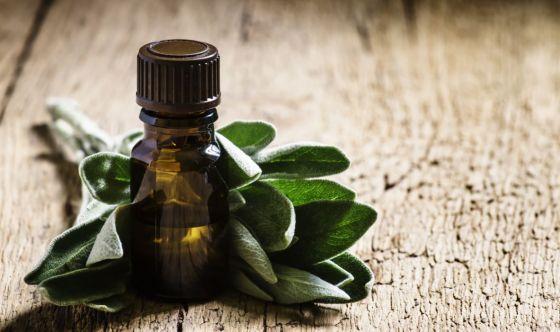 Olio di Salvia Moscatella, l'alleato delle donne