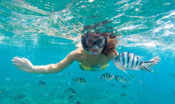 Una nuotata in mare altera significativamente il microbioma
