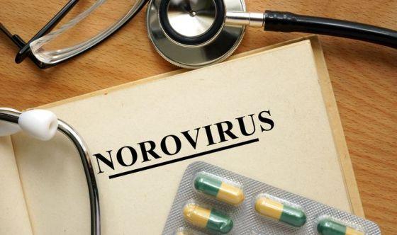 Come evitare le infezioni da Norovirus