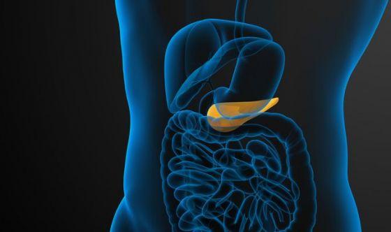 Nuove speranze di cura per il cancro del pancreas
