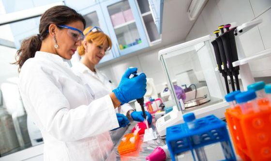Creati mini-tumori per testare terapie farmacologiche