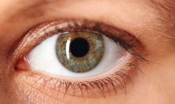 La pupilla dà informazioni sulla personalità