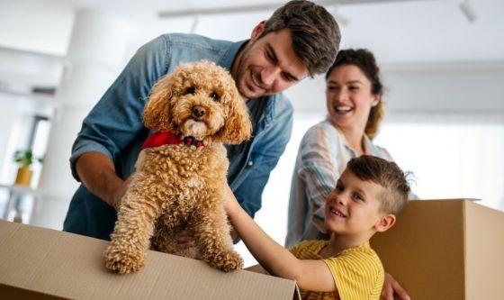 Cani, il decalogo della convivenza responsabile
