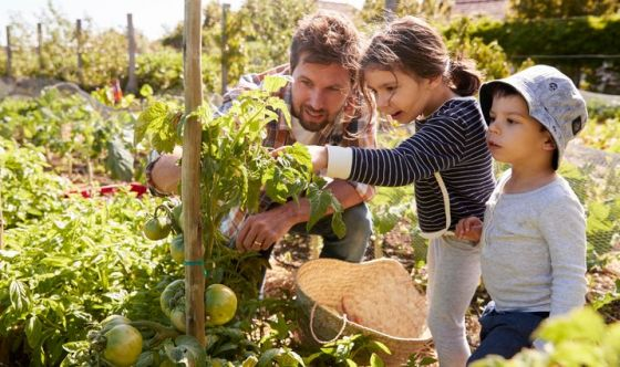 Tutti pazzi per orti e giardini: li amano 6 italiani su 10